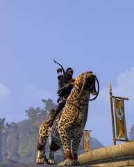 My New Mount ROAR