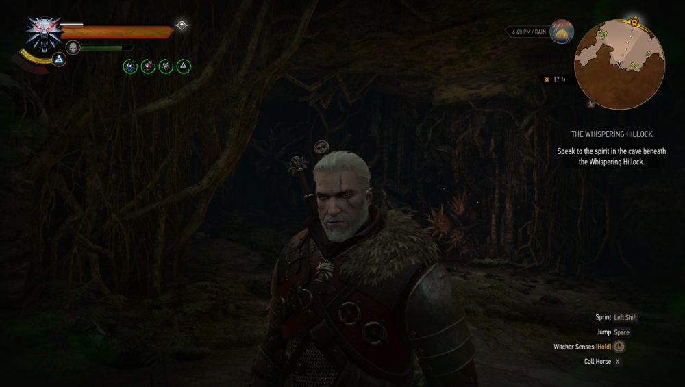 witcher 1.png